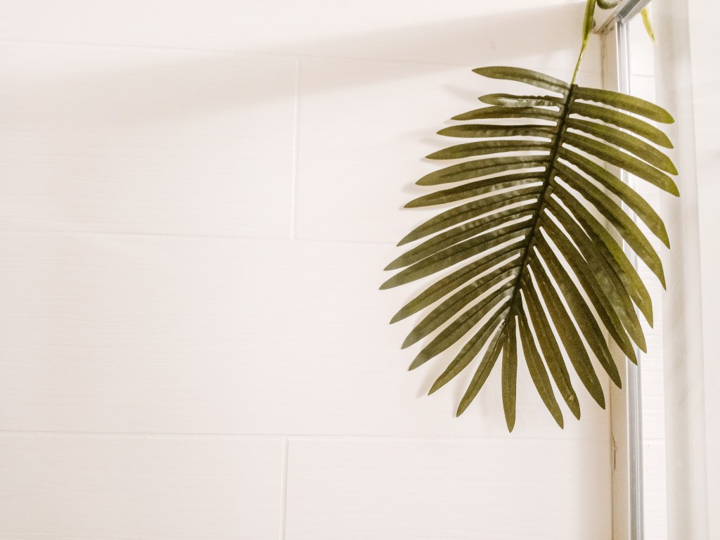 tropical spa bathroom Hanging palm leaf on white background
